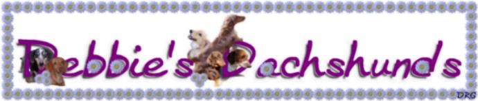 Debbie's Dachshunds Breeder AKC Dachshund Puppies For Sale